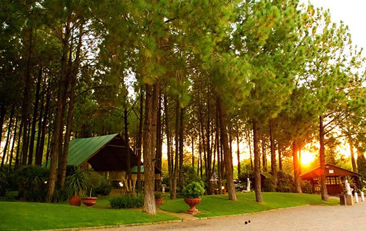 Gauteng Wedding Venues Forest Walk Venue